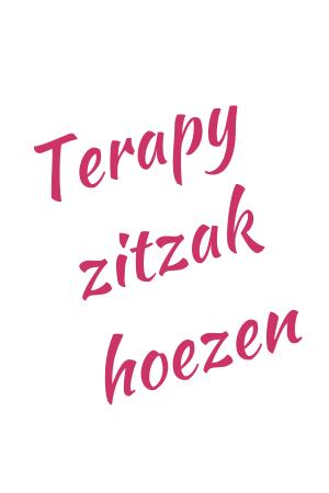 Terapy Zitzak hoezen